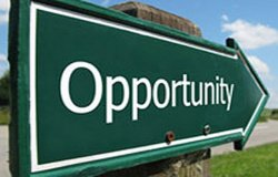 business-opportunity-250